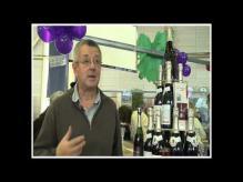 Le Vin - Salon Saga à Vannes